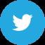 Ellenton CPA Twitter Account